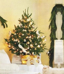 Premium-Grade Mail-Order Fraser Fir | Tabletop Real Christmas Tree